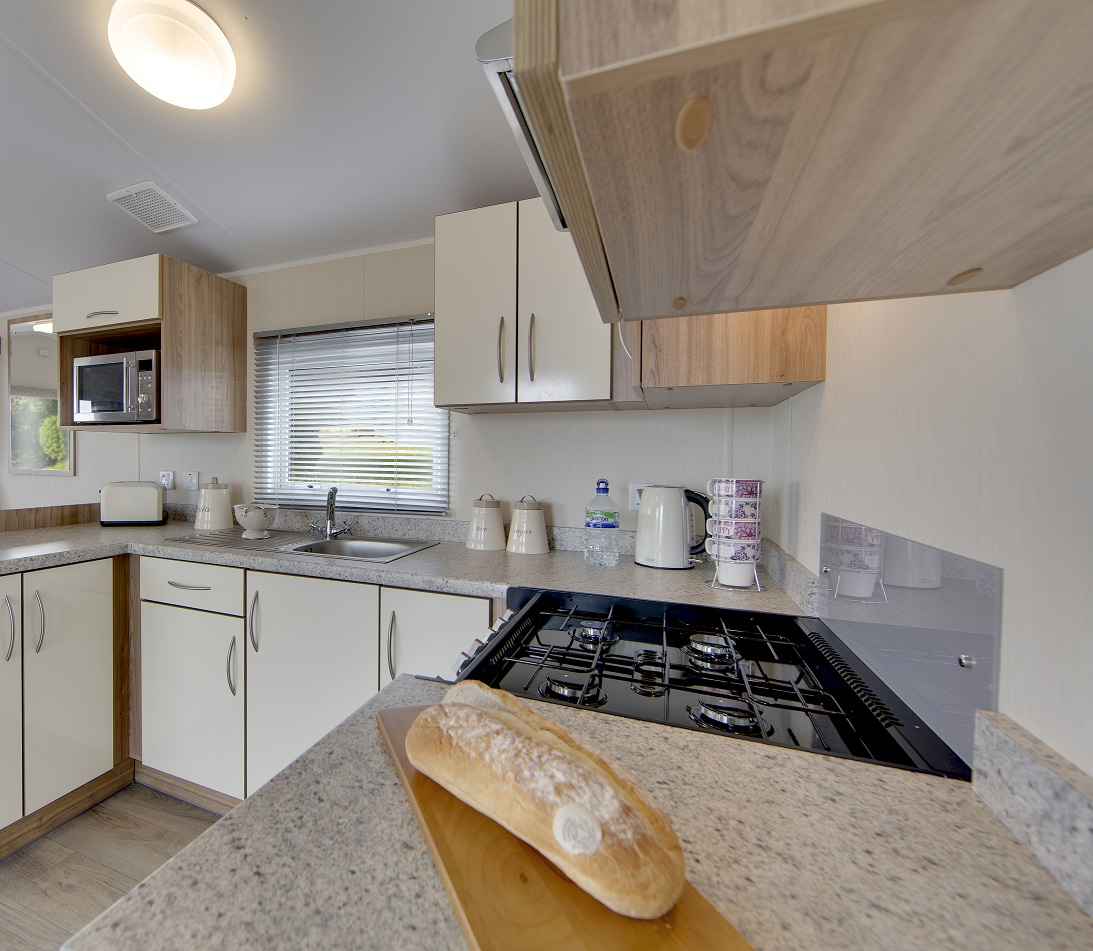 Willerby Rio Gold: Static Caravans and Holiday Homes for Sale on Caravan Parks, Stanhope, Durham and Weardale Large Image 3